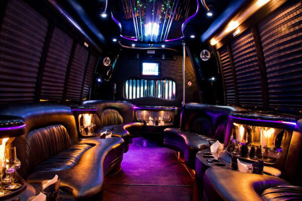 18 passenger party bus rental Hughes